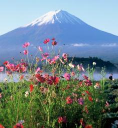 Photo: Yamanashi Prefecture Tourist Association