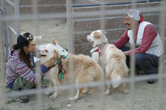 Dedicated staff interact with the animals.
