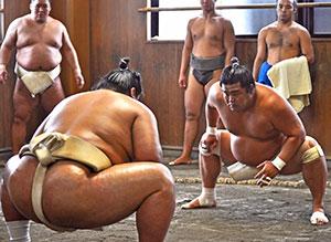 Goeido's friend and rival, Yasunari Miyamoto (ring name Myogiryu) belongs to the same stable.