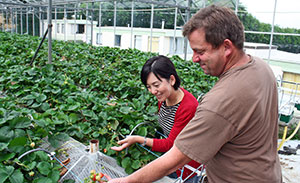 One visit involved checking strawberry crops at sites where jam is made.