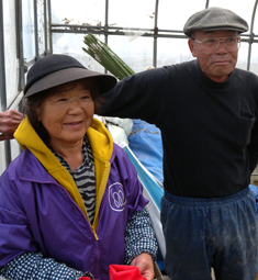 Members of the Green Farmers' Association in Minamisanriku are working to revitalise the community's agricultural sector.