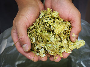 Quality dried hops are used to make the products.