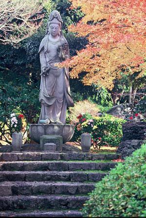 At Yuushien Garden, something is always in bloom.